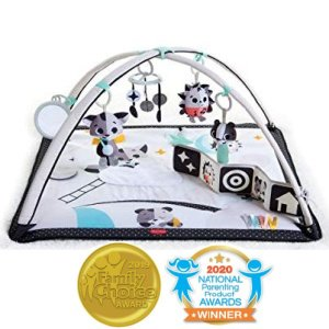 Tiny Love award winning infant activity best newborn toy